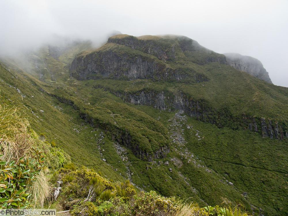 Taranaki / Mount Egmont National Park, New Zealand, North Island