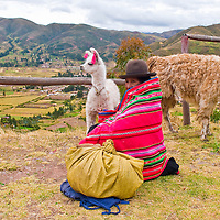 SACRED VALLEY,  PERU - MAY 27 : Unidentified Peruvian woman in traditional colorful clothes seat with here alpacas near a village in the sacred valley , Peru on May 27 2011