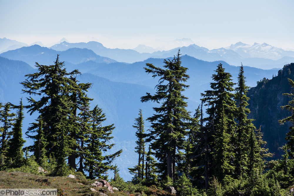 Admire vast views of Cascades peaks on Park Butte Trail in Mount Baker Wilderness, Mount Baker-Snoqualmie National Forest, Washington, USA.