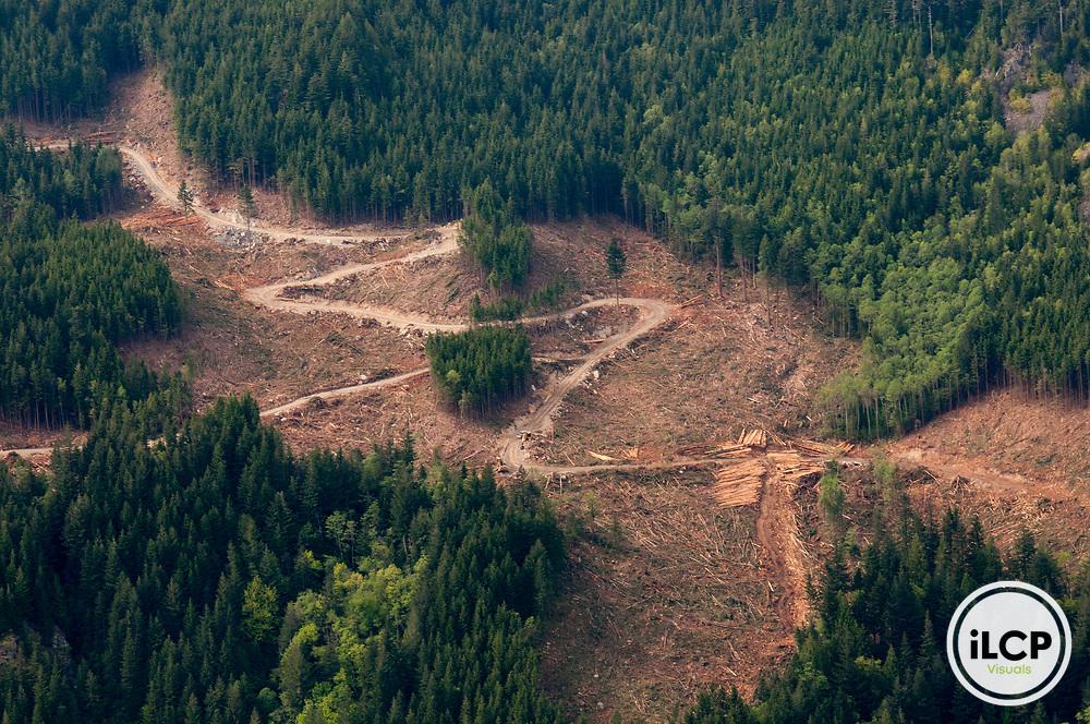 Logging road through the mountains, British Columbia.