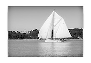 140714_ISON_Panerai_Classics<br /> David Aisher's gaff cutter, Thalia, as she passes Osborne House at the Panerai British Classic Week sailing regatta off Cowes, Isle of Wight. <br /> Picture date Monday 14th July, 2014.<br /> Picture by Christopher Ison. Contact +447544 044177 chris@christopherison.com