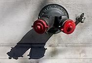 Wall Fire Hydrant