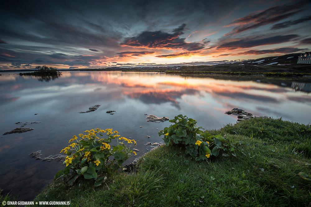 Mývatn, taken in Northeast-Iceland