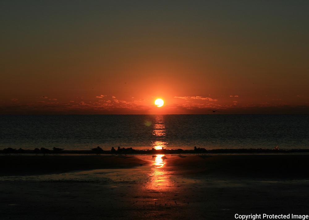 Fire Jekyll Island sunrise with seagulls