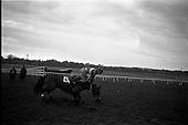 1963 - Leopardstown Races at Leopardstown Race track, Dublin