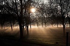 MAR 04 2014  A low early morning sunshine in Hyde Park today