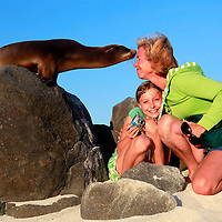 South America, Ecuador, Galapagos Islands. A mother and daughter greet a curious Galapagos Sea Lion on Mosquera Island in the Galapagos.
