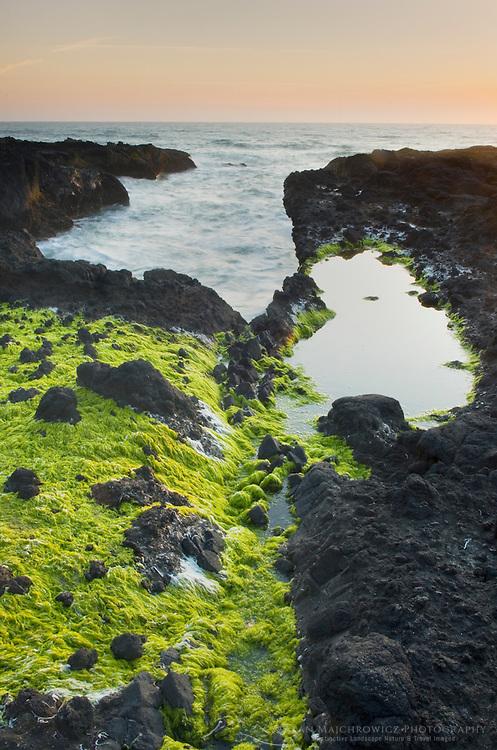 Sunset at Cape Perpetua on the Oregon Coast