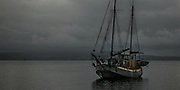 Mystery character boat, Waiheke Island, Hauraki Gulf, Auckland, New Zealand.