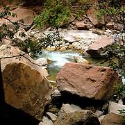 Zion National Park just outside of Springdale, UT.