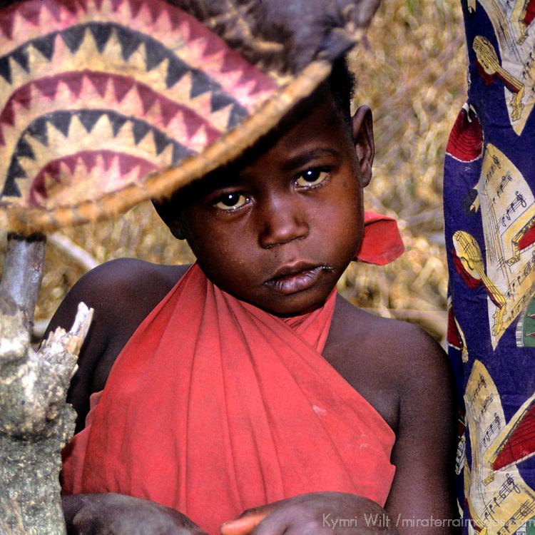 Africa, Kenya, Maasai Mara.