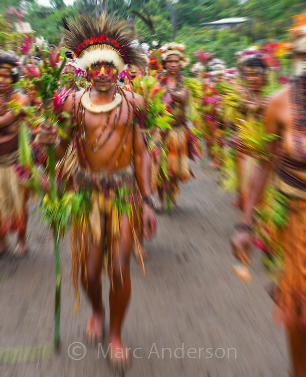 Young man from the Selehoto Alunumuno tribe dancing in a group. They are wearing traditional dress made from feathers and leaves. Photo taken by a small village in the Papua New Guinea highlands.