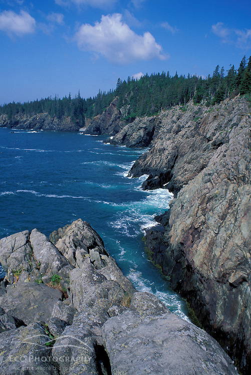 """Cutler, ME. Hiking the """"Bold Coast"""" - Bay of Fundy.  View from the Coastal Trail."""