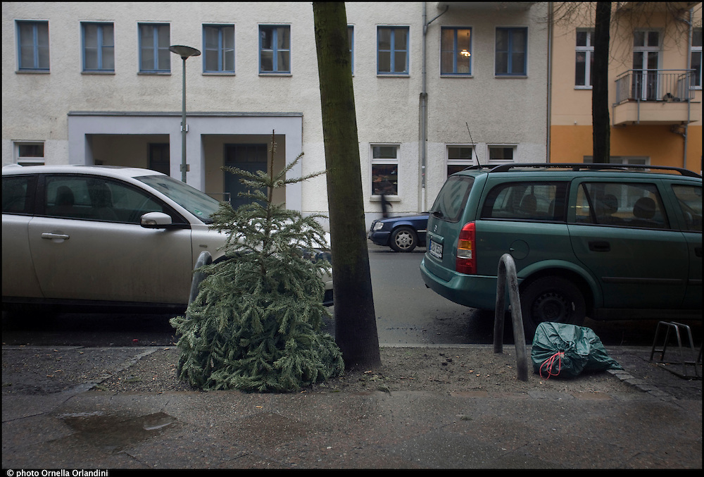 Christmas Tree / Tannenbaum in Berlin after Christmas