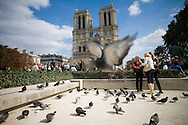 """Notre Dame de Paris is a Gothic cathedral on the eastern half of the Île de la Cité in Paris, France, with its main entrance to the west. It is the cathedral of Paris and the seat of the Archbishop of that city. Notre Dame de Paris is widely considered one of the finest examples of French Gothic architecture. The name Notre Dame means """"Our Lady"""" in French. Tuesday, Sept. 16, 2008. (ivan gonzalez)"""