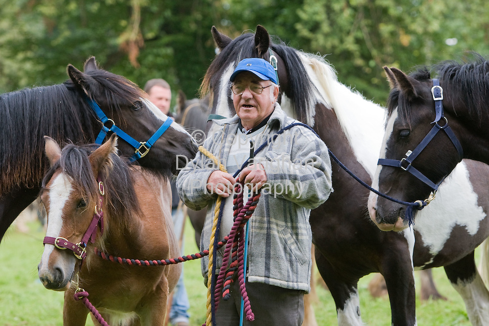 15/8/2008.Peter Reilly from Rathvilly pictured at the Borris Horse Fair in County Carlow yesteday..Picture Dylan Vaughan