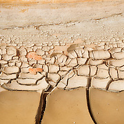 Mudcracks in a variety of shapes and sizes are visible in the sediment at the base of Harris Wash in Utah. Mudcracks, also known as desiccation cracks, result when the top layer of sediment dries before lower layers. When the water in the top layer evaporates, the thin layer separates from the layers below. The loss of moisture also causes the layer to shrink somewhat, causing a strain that results in the cracks.
