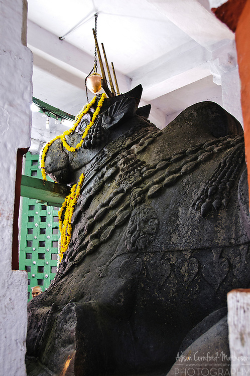 The Basavanagudi Nandi Temple, Bangalore is also known as the Big Bull Temple. It contains the largest known Nandi monolith.