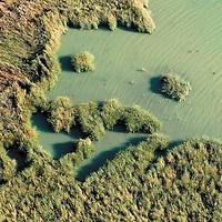 Sastago Salty Lagoon. Huesca.