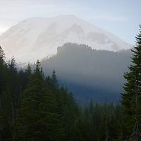 Rainier bathed in light at sunset - Mt. Rainier National Park, WA