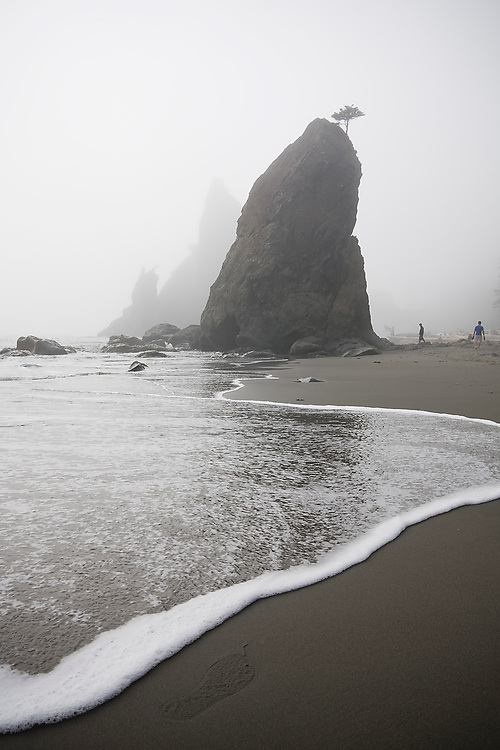 A wave rolls up below a large sea stack at Rialto Beach, Olympic National Park, Washington.