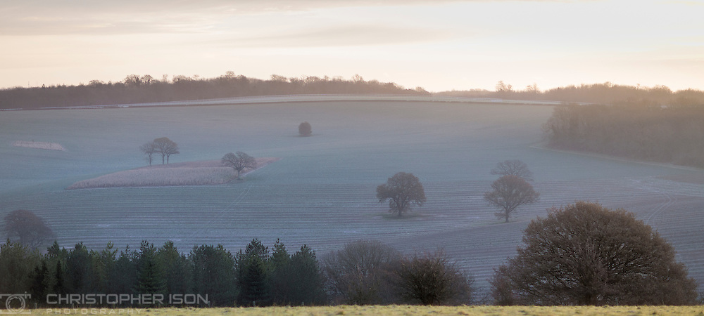 Sunrise, Goodwood, West Sussex.<br /> Picture date: Monday November 23, 2015.<br /> Photograph by Christopher Ison &copy;<br /> 07544044177<br /> chris@christopherison.com<br /> www.christopherison.com