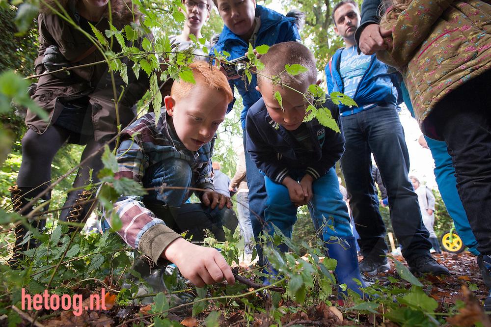 nederland, enschede 12okt2014 paddenstoelen ontdekkingstocht op Hof Espelo - landschapoverijssel bij Enschede. Zondagmiddag op pad met twee paddenstoelenkenners. foto Cees Elzenga/hetoog.nl