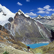 Below the glaciers of Yerupaja Grande, a trekker ascends Sambuya Pass (4750 m or 15,580 feet) above Lake Solterachocha (4120 m or 13,500 feet), in the Cordillera Huayhuash, Andes Mountains, Peru, South America. Yerupaja Grande (west face, 6635 m or 21,768 ft) is the second-highest peak in Peru, highest in Cordillera Huayhuash, and highest point in the Amazon River watershed (which is on the other side of the peak). Published in Wilderness Travel Catalog of Adventures 2014 and in 2009 on Swedish trekking company site www.adventurelovers.se.