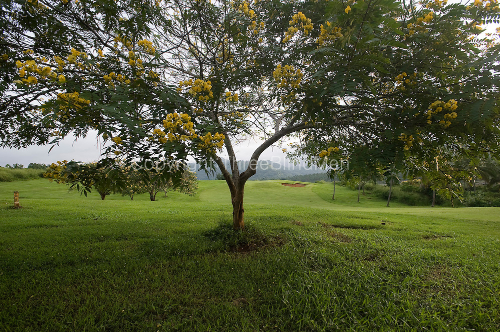 Victoria Golf Club. Digana. Sri Lanka.