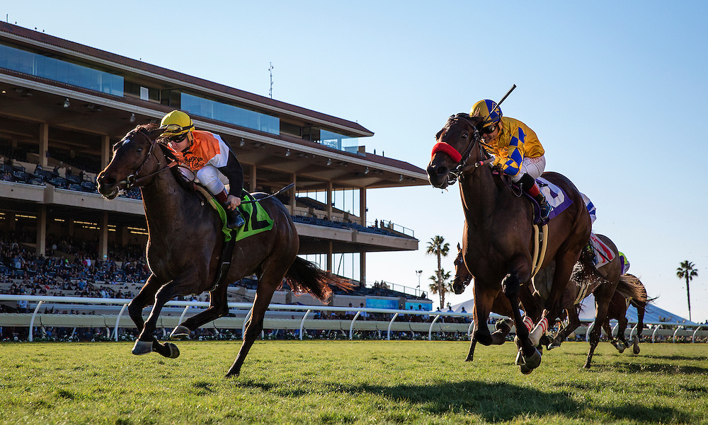 November 28, 2015:  Family Meeting with Drayden Van Dyke up (left) defeats Riri and Rafael Bejarano to win the Jimmy Durante Stakes at Del Mar Race Track in Del Mar, California. Evers/ESW/CSM
