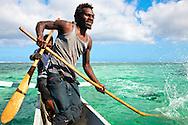 Ni Vanuatu man making loud splashes in order to frighten the fish to swim into the net which other fishermen have set up underwater. Uleveo, Maskelyne Island, Malampa Province, Malekula, Vanuatu