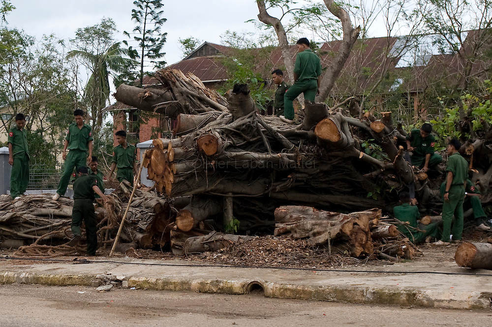 Soldiers cut a tree which collapsed during cyclone Nargis in Yangon on May 16, 2008. The Red Cross on May 16, 2008 launched an appeal for victims of the devastating cyclone in Myanmar and warned that delays in providing emergency aid would exacerbate an already dire situation.