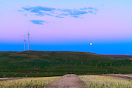 "The Full Moon of August 31, 2012 (which was a ""Blue Moon"" -- i.e. the second Full Moon of the month) rising over a harvested field, with windmills of the Wintering Hill wind farm. The pink Belt of Venus band is visible above the blue band above the horizon that is Earth's shadow. This is a 6-exposure HDR stack taken with the Canon 7D at ISO 100 and 16-35mm lens. Metered exposures."