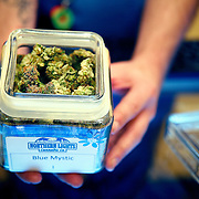 SHOT 2/2/14 12:52:26 PM - Colorado became the first state in the nation to open recreational pot stores and with that marijuana tourism in Denver and the state has become a booming business. Northern Lights Cannabis Company in Edgewater, Co. is one of a number of licensed dispensaries currently allowed to sell marijuana and edibles for recreational use. Get High Getaways in a Bed and Breakfast in Lakewood, Co. with an on-site marijuana greenhouse that features complimentary marijuana, <br /> a 24/7 chauffeur/desiginated driver service, a hot tub and spa services.<br /> (Photo by Marc Piscotty / &copy; 2014)