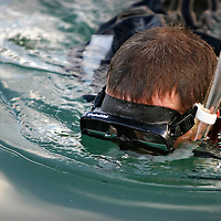 CRYSTAL RIVER, FL -- January 4, 2009 -- Instructor Quinn Atkinson scans the scene before letting tourists swim with manatees during a American Pro Diving Center tour in Crystal River, Fla., on Sunday, January 4, 2009.  Crystal River is the home of the nation's largest population of manatees, who will often come right up to humans on the various snorkeling and scuba tours of the area.  (Chip Litherland for The New York Times)