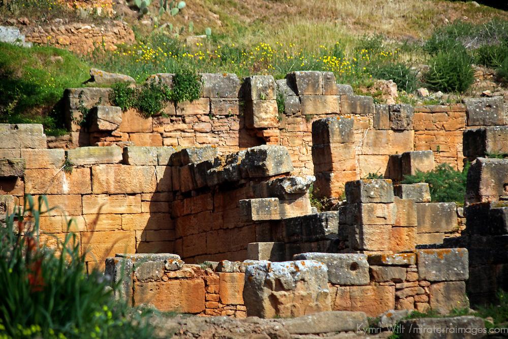 Africa, Morocco, Rabat. The Chellah necropolis ruins.