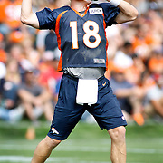 SHOT 7/25/13 9:44:14 AM - Denver Broncos quarterback Peyton Manning #18 drops back to pass as he runs through drills during opening day of the team's training camp July 25, 2013 at Dove Valley in Englewood, Co.  (Photo by Marc Piscotty / © 2013)