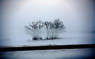 Heavy fog blankets farm fields off of Hwy 151 north of Columbus, Wisconsin. ..