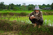 A rice field worker takes a smoke break in Nakhon Nayok, Thailand