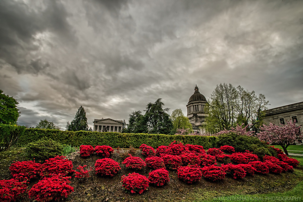 Gardens @ State Capitol Campus