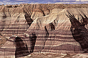 Blue Mesa's colored ribbons of shale and silt appear beige on a cloudy day at Petrified Forest NP.