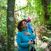 Visitors explore the proposed Simmons Hammock Greenway in Sefner, Florida. The land is one of the few old growth forests left in this part of Florida and is home to one of the only bald eagle nests in Hillsborough County, Florida, but is currently slated to become a high-voltage power corridor for the Tampa Electric Company. Community members have protested and testified, and for now the project has been put on hold.