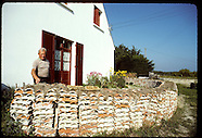 FRANCE 30201: OYSTERS
