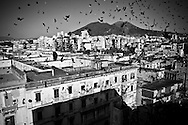 Pontcielli (Naples). During the party the people usually throws confetti.In Ponticelli, the eastern outskirts of Naples, for 250 years, the 5th of August is celebrated the Mother of God with the title of &ldquo;Our Lady of the Snows.&rdquo;<br /> The statue of the patron is hoisted on top of the &ldquo;Wagon&rdquo;, the heavy machinery of the party of about 17 meters, carried by hand from less than a hundred men, along the streets of the neighborhood.<br /> The Virgin is enthroned above.<br /> In Via San Rocco the people, without effort, tap the wagon from the balconies, covering it sometimes with confetti.<br /> In Naples, in the places where degradation of culture and traditions are still popular, people condense in the briefest of moments, cyclical, of the party, its history daily, made of sweat, hopes, disappointments, fatigue, illness. The party therefore assumes a character of inevitability for its ability to signify all the painful complexity of life.