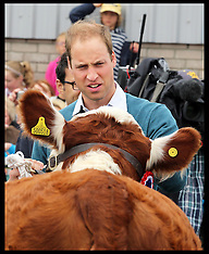 AUG 14 2013 Duke of Cambridge at the Anglesey Show