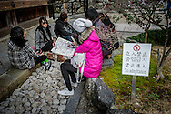 """Young East Asian travelers flirting with Kyoto boundaries of sensitivity while taking a break beside a """"No Admittance"""" sign at Kyomizu Temple in Kyoto, Japan."""