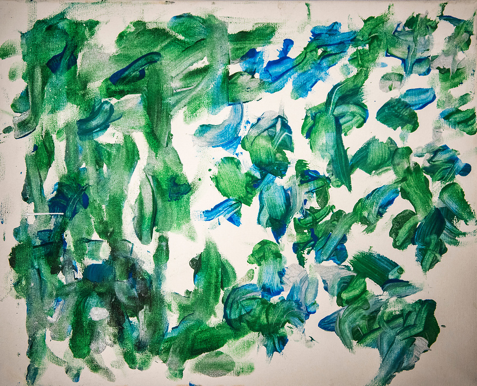 rer031617p/Life/03.16.2017/Roberto E. Rosales <br /> Pictured is a painting created by a Gorilla at the zoo.<br /> Albuquerque, New Mexico(Roberto E. Rosales/Albuquerque Journal)
