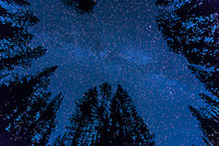 A long exposure image of the night sky over Waterfowl Lakes on the Icefields Parkway in Banff National Park. It was extremely dark and many more stars than we can normally see were visible in the sky.<br /> <br /> &copy;2015, Sean Phillips<br /> http://www.RiverwoodPhotography.com