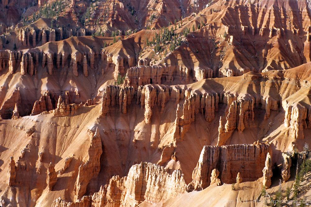 USA, Utah, Cedar Breaks. Hoodoos of Cedar Breaks National Monument.