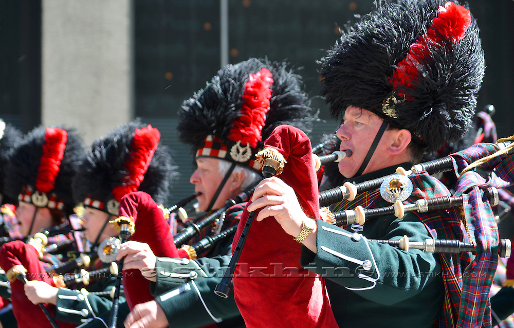 Marching Bagpipe Band on Tartan Day Parade.